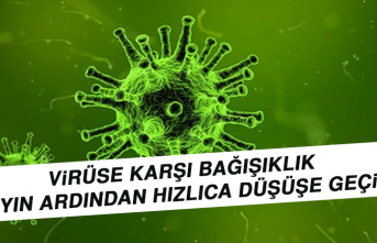 Virüse Karşı Bağışıklık Bir Ayın Ardından Hızlıca Düşüşe Geçiyor