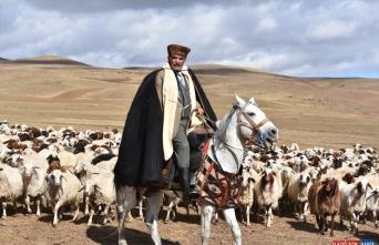 Kars'taki asırlık koç katım geleneği renkli görüntüler oluşturdu