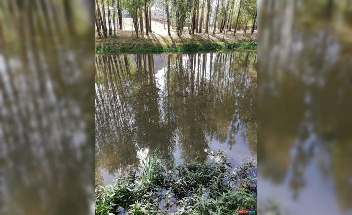 Muradiye'de dereye düşen 3 yaşındaki çocuk öldü