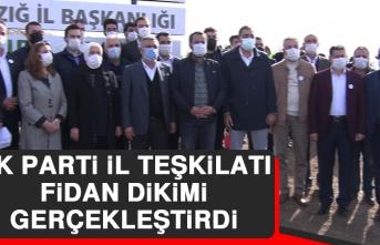 AK Parti İl Teşkilatı Fidan Dikimi Gerçekleştirdi