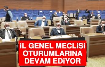 İl Genel Meclisi, Oturumlarına Devam Ediyor