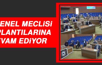 İl Genel Meclisi, Toplantılarına Devam Ediyor