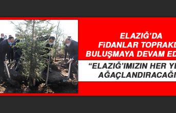 """Vali Yırık: """"Elazığ'ımızın her yerini ağaçlandıracağız"""""""