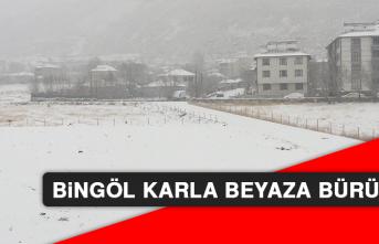 Bingöl Karla Beyaza Büründü