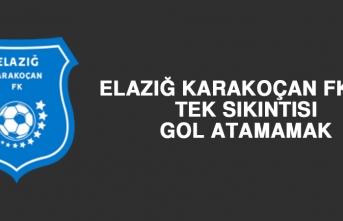 Elazığ Karakoçan FK'nın Tek Sıkıntısı Gol Atamamak