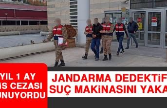 Jandarma Dedektifleri Suç Makinasını Yakaladı