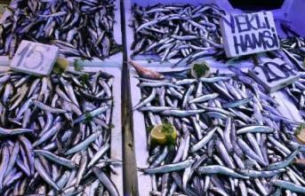 Kar yağışı balık satışını artırdı