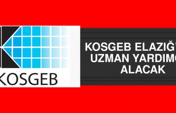 KOSGEB Elazığ'dan Uzman Yardımcısı Alacak