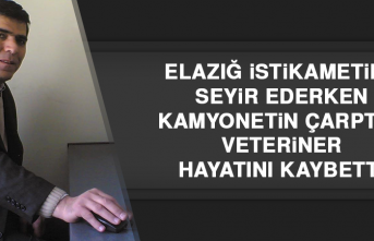 Malatya'da Kamyonetin Çarptığı Veteriner Hayatını Kaybetti