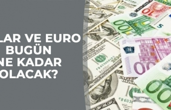 19 Ocak Dolar Ne Kadar, Euro ve Sterlin Bugün Kaç TL?