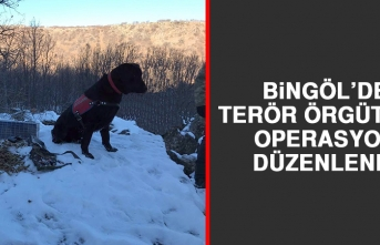 Bingöl'de Terör Örgütüne Operasyon Düzenlendi