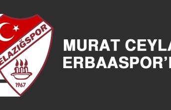 Murat Ceylan, Erbaaspor'da