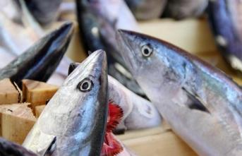 Soğuk hava balık fiyatlarına yansıdı