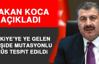 Türkiye'ye Ye Gelen 15 Kişide Mutasyonlu Virüs Tespit Edildi