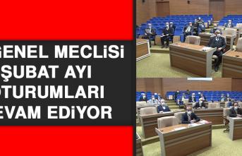İl Genel Meclisi Şubat Ayı Oturumları Devam Ediyor