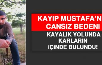 Kayıp Mustafa'nın Cansız Bedeni Kayalık Yolunda Karların İçinde Bulundu