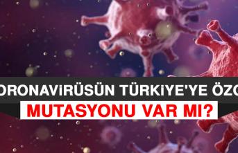 Koronavirüsün Türkiye'ye Özgü Mutasyonu Var mı?