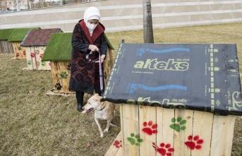 Külliye'nin geri dönüştürülen atıkları sokak hayvanlarına yuva oldu