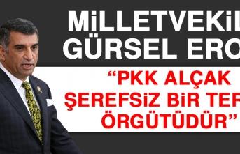 Milletvekili Erol, TBMM'de Terör Örgütlerini Lanetledi