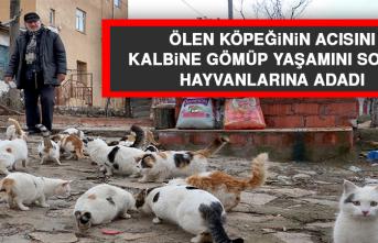 Ölen Köpeğinin Acısını Kalbine Gömüp, Yaşamını Sokak Hayvanlarına Adadı