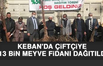 Keban'da Çiftçiye 13 Bin Meyve Fidanı Dağıtıldı