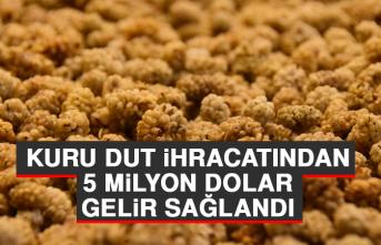 Kuru Dut İhracatından 5 Milyon Dolar Gelir Sağlandı