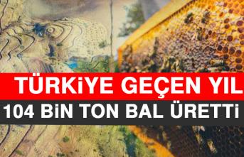 Türkiye Geçen Yıl 104 Bin Ton Bal Üretti
