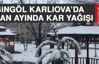 Bingöl Karlıova'da Nisan Ayında Kar Yağışı