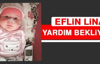 Eflin Lina Yardım Bekliyor!