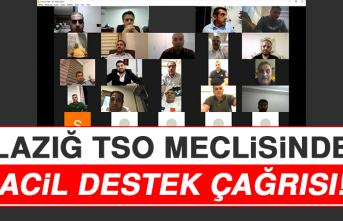 Elazığ TSO Meclisinden Acil Destek Çağrısı
