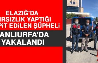 Elazığ'da Hırsızlık Yaptığı Tespit Edilen Şüpheli Şanlıurfa'da Yakalandı