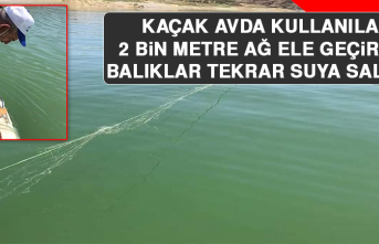 Kaçak Avda Kullanılan 2 Bin Metre Ağ Ele Geçirildi, Balıklar Tekrar Suya Salındı