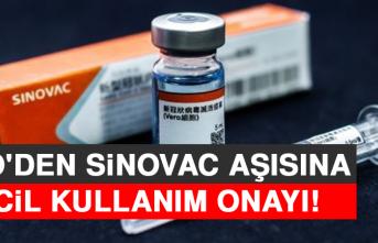 DSÖ'den Sinovac Aşısına Acil Kullanım Onayı