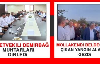 Milletvekili Demirbağ, Muhtarları Dinledi Ardından Mollakendi Beldesi'nde Çıkan Yangın Alanını Gezdi