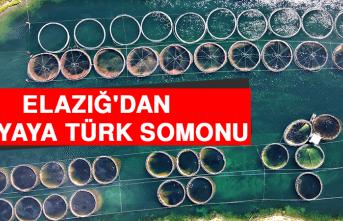 Türkiye'nin Üretim Merkezi Elazığ'dan Dünyaya Türk Somonu