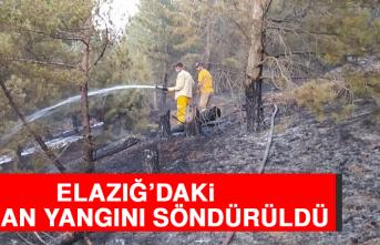 Elazığ'daki Orman Yangını Söndürüldü
