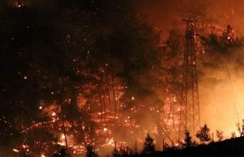 Osmaniye'deki Yangınla İlgili 5 Gözaltı