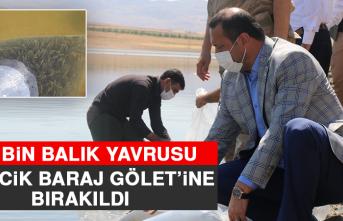100 Bin Balık Yavrusu Kalecik Baraj Gölet'ine Bırakıldı