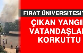 Fırat Üniversitesi'nde Çıkan Yangın Vatandaşları Korkuttu