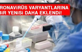 Koronavirüs Varyantlarına Bir Yenisi Daha Eklendi!