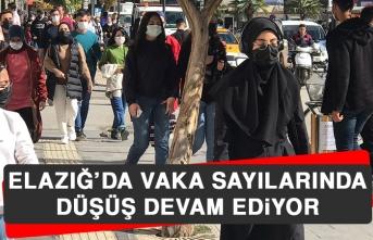 Elazığ'da Vaka Sayılarında Düşüş Devam Ediyor
