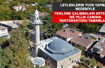 Leyleklerin Yuva Yapması Nedeniyle Yenileme Çalışmaları Ertelenen 386 Yıllık Caminin Restorasyonu Tamamlandı