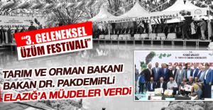 """""""3. Geleneksel Üzüm Festivali"""" Bakan Dr. Pakdemirli'nin Katılımıyla Gerçekleşti"""