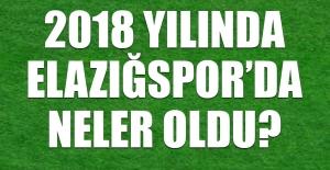 2018 Yılında Elazığspor'da Neler Oldu?