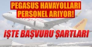 Pegasus Havayolları Personel Arıyor!