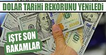 Dolar Tarihi Rekorunu Yeniledi