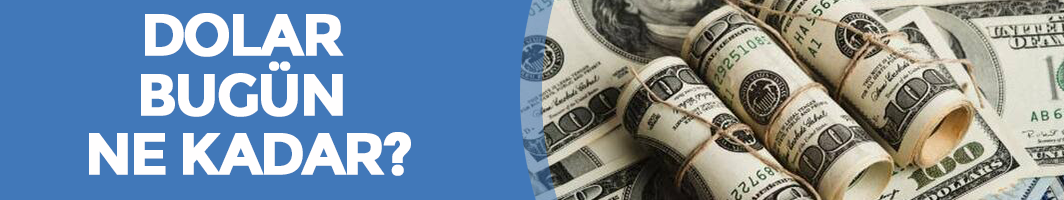 13 Kasım Dolar - Euro Fiyatları