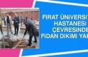 Fırat Üniversitesi Hastanesi Çevresinde Fidan Dikimi...