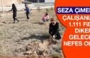 SEZA Çimento Çalışanları 1.111 Fidan Dikerek...