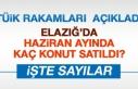 Elazığ'da Haziran Ayında Kaç Konut Satıldı?